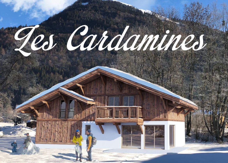 Insertion-Cardamines-DMA-Agences-recadrée.jpg